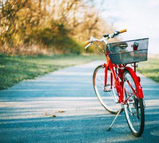 camping accueil vélo en vendée